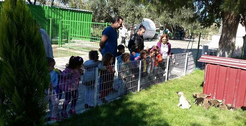 Burhaniye'de Öğrenciler Hayvan Barınağını Ziyaret Etti