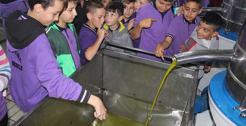 Öğrenciler Zeytinyağı Üretim Tesisini Gezdi